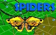 Miniclip game Spiders